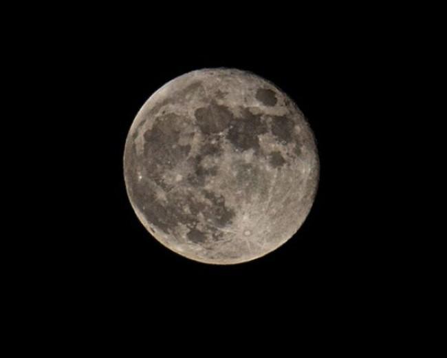 Loca luna llena
