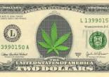 Sobre leyes, debate y  Marihuana